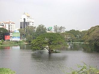 Chetput Lake - Image: Pond at Chetput 1