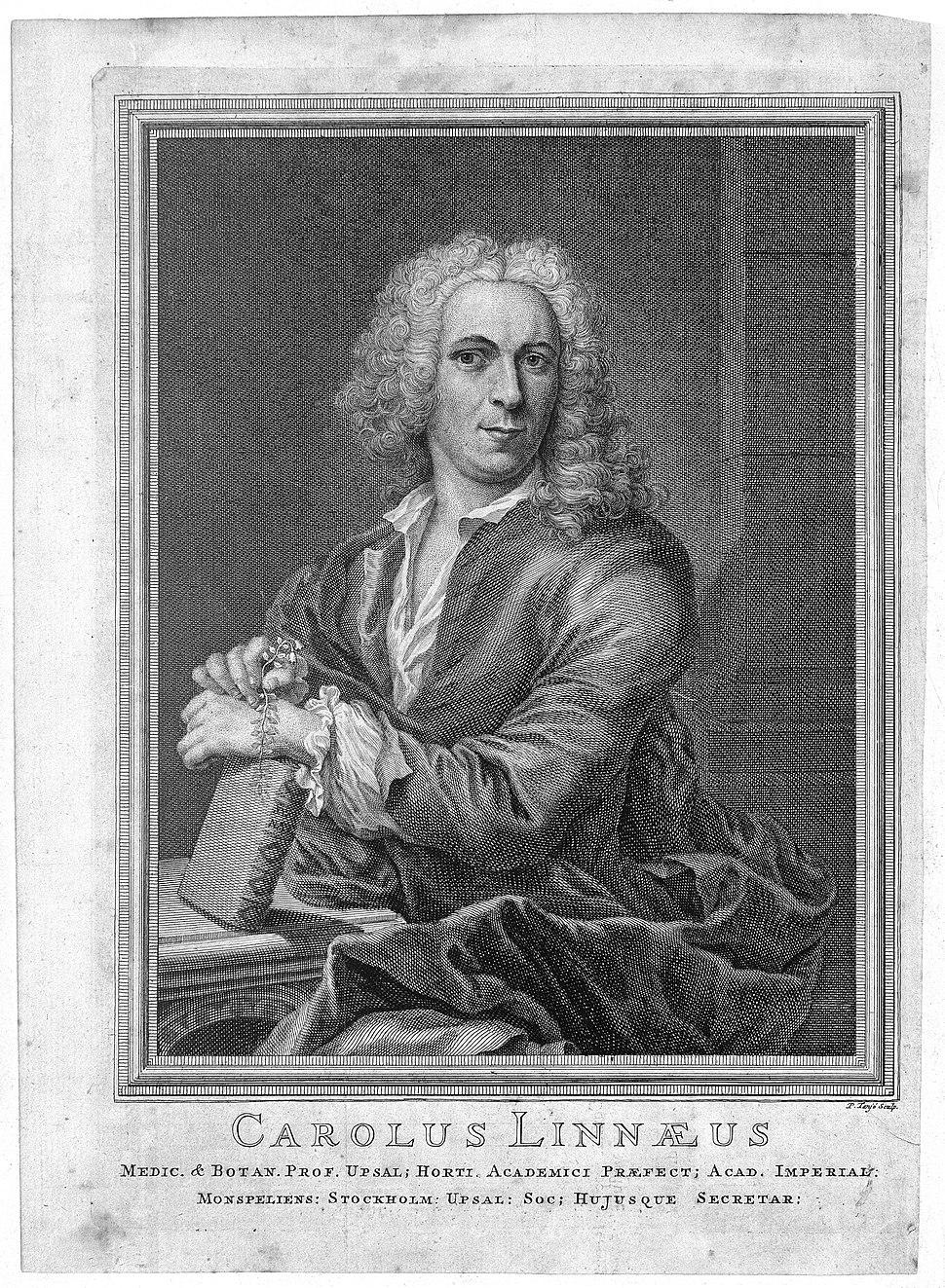 Portrait of C. Linnaeus. Wellcome L0006459