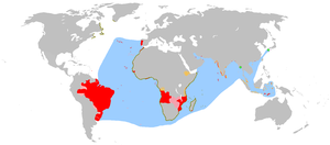 An anachronous map of the Portuguese Empire (1415-1999). Red - true possessions; Pink - explorations, areas of influence and trade and claims of sovereignty; Blue - main sea explorations, routes and areas of influence. The disputed discovery of Australia is not shown.