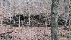 Potts Creek Rockshelter.jpg