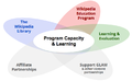 Program Capacity and Learning model.png