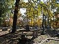 Prospect Cemetery, Montgomery County, MS.jpg