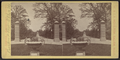 Prospect Park scenery, Brooklyn, N.Y, from Robert N. Dennis collection of stereoscopic views 2.png