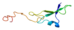 Protein NRG1 PDB 1hae.png