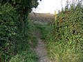 Public Footpath - geograph.org.uk - 540248.jpg