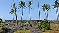 Puuhonua o Honaunau Historical Park, Captain Cook (504628) (23804001310).jpg