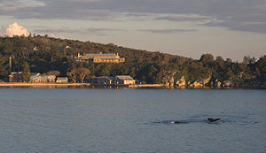 North Head Quarantine Station - The hospital, boiler house and wharf at the Quarantine Station, with humpback whales passing by