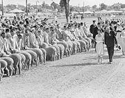 QueenElizabeth InspectingSheep WaggaWagga 1954