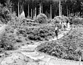 Qui Si Sana Sanatorium and Biological Institution showing Dr Louis Dechmann and guests walking in the Rose Garden, 1913 (WASTATE 1571).jpeg