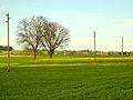 Rümlang - Katzensee - Affoltern 2012-04-28 17-43-46 (P7000).JPG