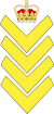 RCMP Sergeant Major Rank.svg