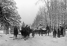 RIAN archive 61382 Horse patrol in a street of Kryukovo village in the Moscow suburbs.jpg