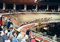 Radstadion Köln 03.jpg