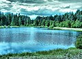 Ramensky District, Moscow Oblast, Russia - panoramio - Andris Malygin (21).jpg