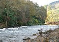 Rapids on the River Tay - geograph.org.uk - 1579848.jpg