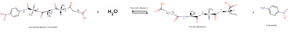 Pancreatic elastase - Reaction catalysed by pancreatic elastase 1. This image represents the hydrolysis of the succinyl-Ala-Ala-Ala-p-nitroanalide. The addition of one water molecule provokes the hydrolysis of the molecule and the release of p-nitroaniline.
