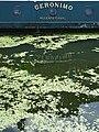 Regents Canal - London - England - 02 (27776135004).jpg