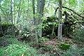 Remains of Himmlers quarter - panoramio.jpg