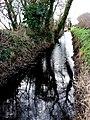 Rhyne near Godney (geograph 2261669).jpg
