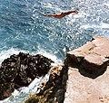 Rick Charls- Acapulco Cliff Dive.jpg