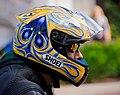 Rider (8360685335).jpg