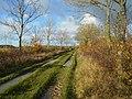Ridgeway Lane, Lytes Cary.jpg