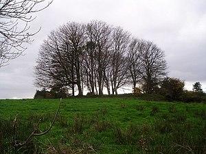 Fairy fort - Ringfort at Cloonmung