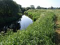 River Avon near Chippenham sewage works - geograph.org.uk - 1337031.jpg