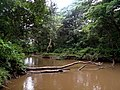 River Kayambura.jpg