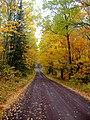 Road (4977360590).jpg