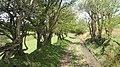 Road to Bwlch-gwyn - geograph.org.uk - 1463158.jpg