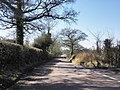 Road to Marsh Green - geograph.org.uk - 1738087.jpg