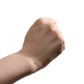 Rock-paper-scissors (rock).png