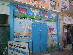 Pharmacie vétérinaire à Rosso (Mauritanie)