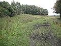 Rough ground, Bannockburn - geograph.org.uk - 1748569.jpg
