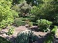 Royal Botanical Garden in Madrid 27.jpg