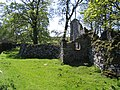 Ruined house at Thorns and baby owl - geograph.org.uk - 707771.jpg