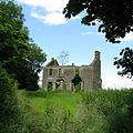 Ruined house near Lisnawhiggel - geograph.org.uk - 1046681.jpg