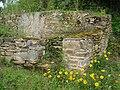 Ruins and flowers 3.JPG
