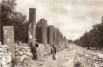 Ruins of Samaria.jpg