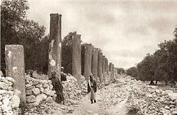 רחוב עמודים בחורבות שומרון, תצלום משנת 1925 לערך