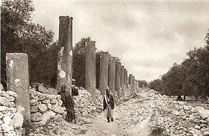 Samaria (ancient city) - Ruins of the city of Samaria (1925)