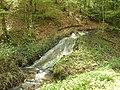 Ruisseau (3).jpg