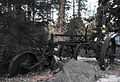 Rusting in the Forest (5213020686).jpg