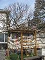 Ryohoji -02.jpg