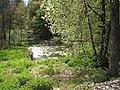 Sádky (rybník) (010).jpg
