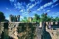 São Jorge Castle (34905312540) (2).jpg