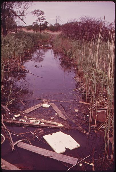File:SWAMP AREA NEAR SOUTH BEACH, STATEN ISLAND. TOWERS OF VERRAZANO-NARROWS BRIDGE IN BACKGROUND - NARA - 547844.jpg