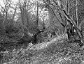 Sandy Hill Bridge, Basingstoke Canal - geograph.org.uk - 478566.jpg