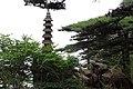 Sanqing Shan 2013.06.15 12-54-24.jpg